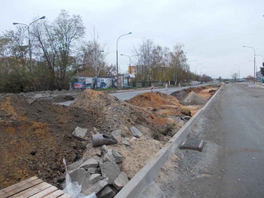 ul. Królowej Jadwigi w Kędzierzynie-Koźlu (11).jpeg