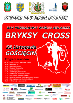 plakat-XXV-BryksyCross.png